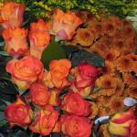 nv_frischeblumen_09